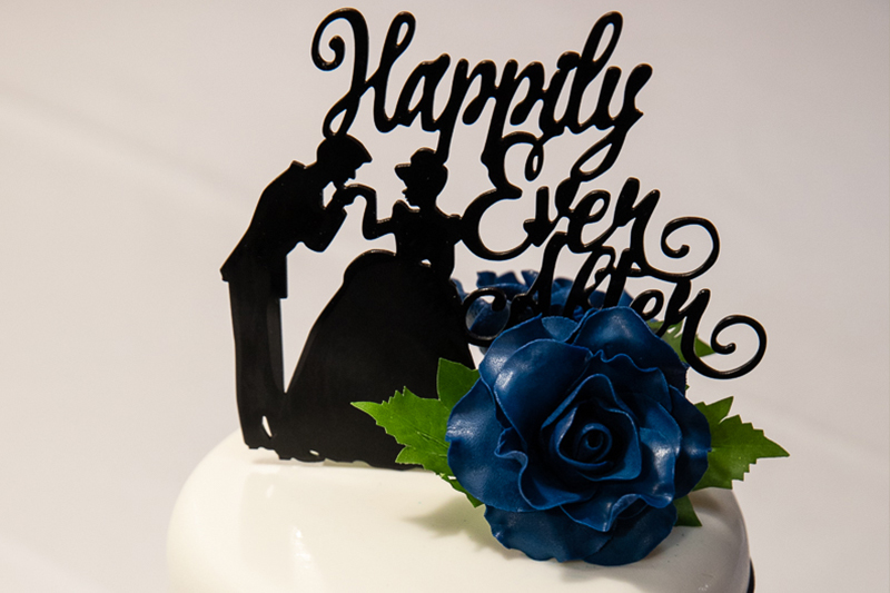 wedding cake topper at Woodman Estate wedding